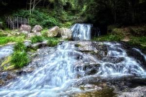 滝と稲穂でHDR@滝の全景で鳴滝はおしまい!