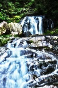 滝と稲穂でHDR@鳴滝の迫力ある流水