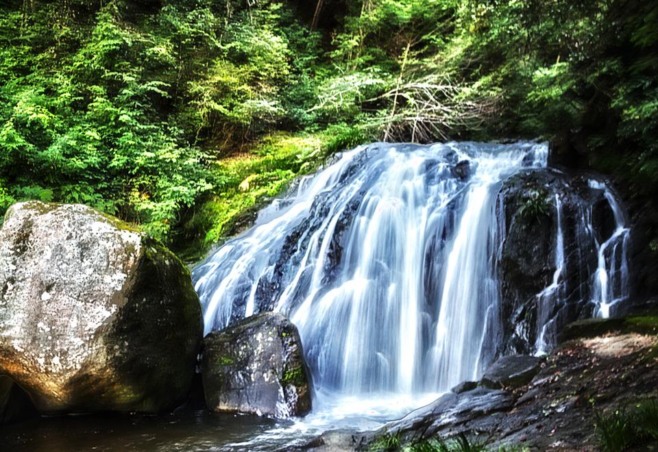 鳴滝森林公園の鳴滝