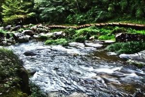 滝と稲穂でHDR@鳴滝森林公園の響の小道
