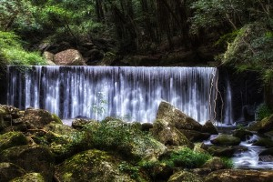 滝と稲穂でHDR@鳴滝のすぐ上にある砂防ダム