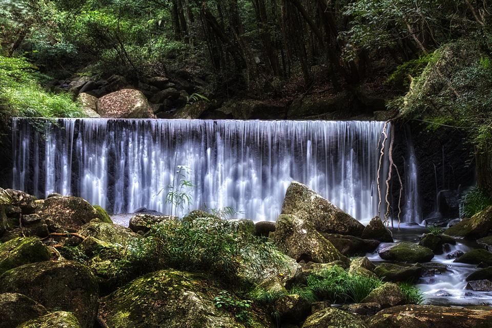 鳴滝森林公園の砂防ダム