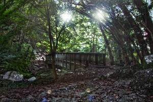 滝と稲穂でHDR@鳴滝森林公園の磊々橋(らいらいきょう)