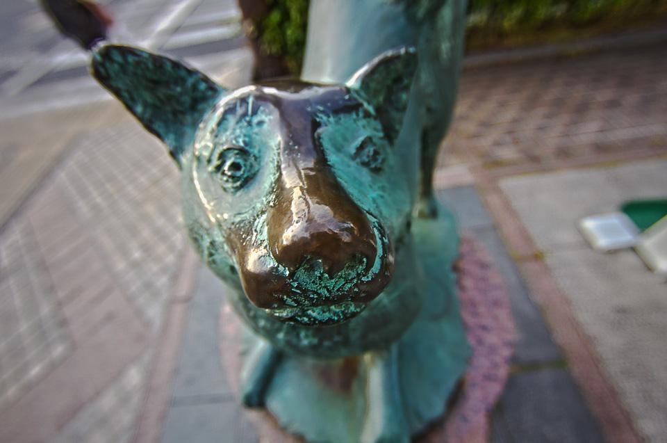 桃太郎大通りにある犬像