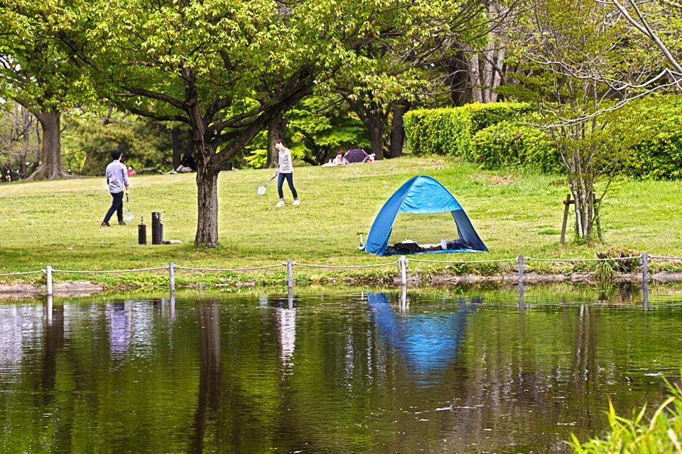 どんぐり池のテント