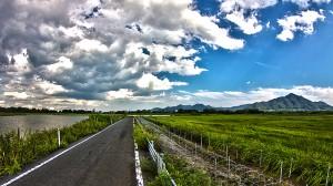 左右の雰囲気が違う、滑走路沿いの道と空(フルーム走る!)@SkyCollection