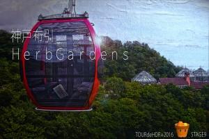 神戸布引HerbGardensステージ9の始まりです!@神戸布引HerbGardens