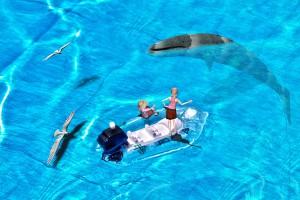 海面に顔を出したクジラと3Dモデルの合成@たまの港フェスティバルでHDR