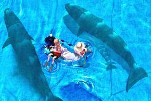家族クジラと3Dモデルの合成@たまの港フェスティバルでHDR