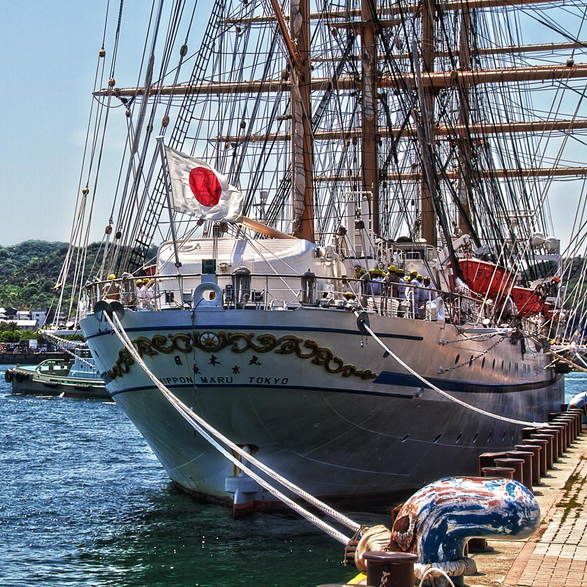 スケルトン日本丸