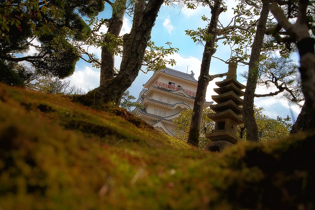 福寿会館からみた福山城