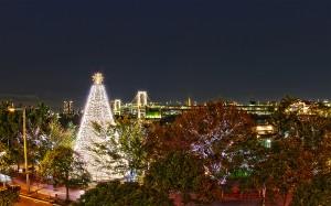 レインボーブリッジとクリスマスツリー@BRIGHT CHRISTMAS