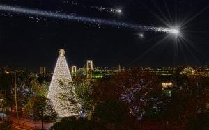 台場メモリアルツリーと流れ星@BRIGHT CHRISTMAS