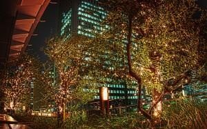新丸ビル7階テラスから見る日本生命丸の内ビル@夜の東京駅丸の内駅舎